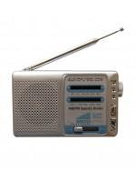 Radio AM/FM SR101